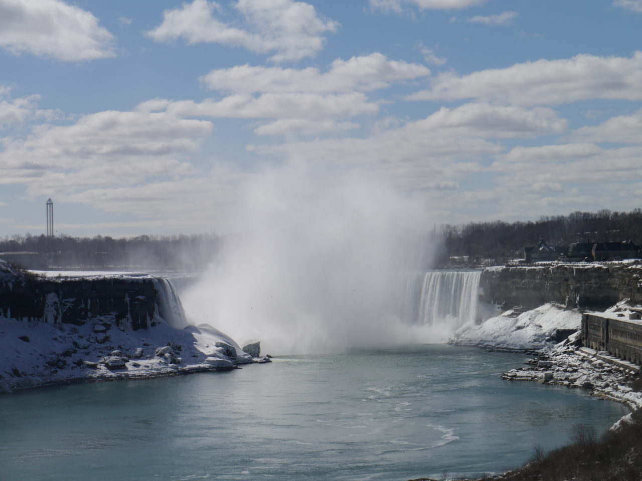 One of the Most Entertaining Webcams in the World is here in Niagara Falls!