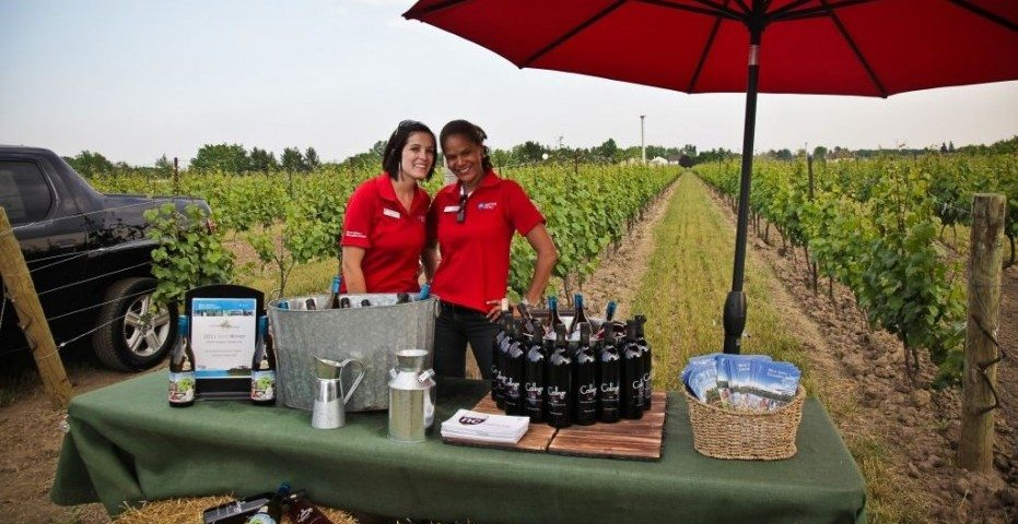 Niagara Wine is showcased at the Niagara New Vintage Wine Festival happening now!