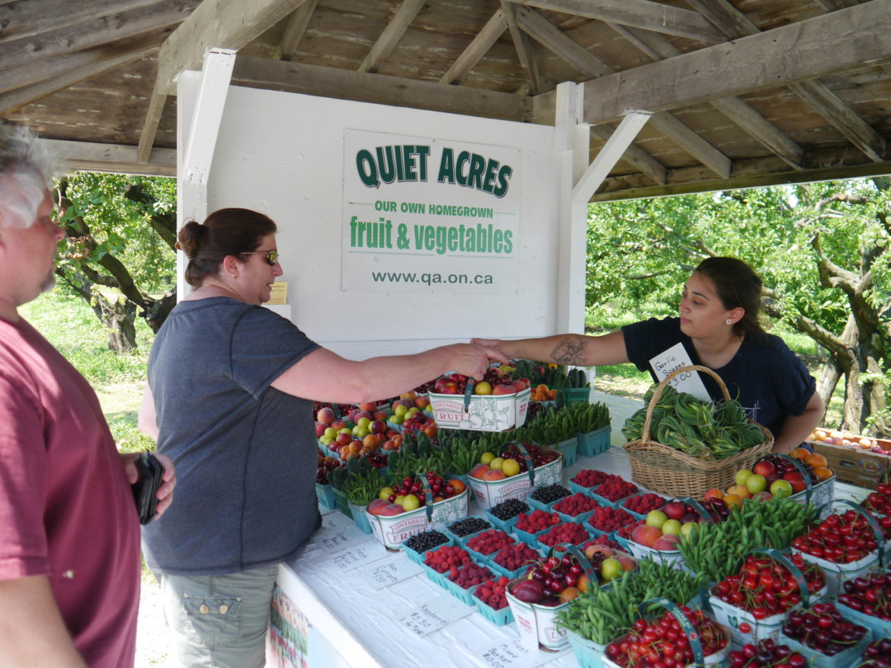 Niagara Falls farmers markets