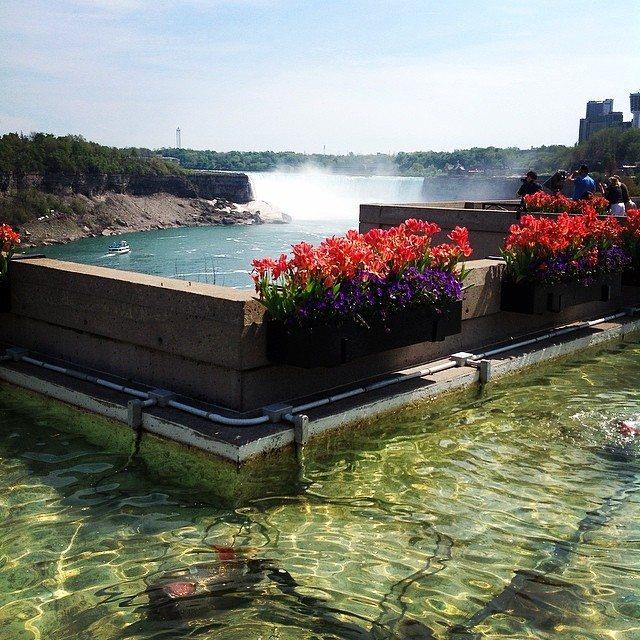 Niagara Falls in Spring