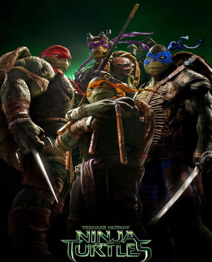 Ninja Turtles Light Displays