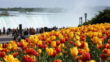Spring Break in Niagara Falls