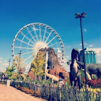 Niagara Fun Fall Activities
