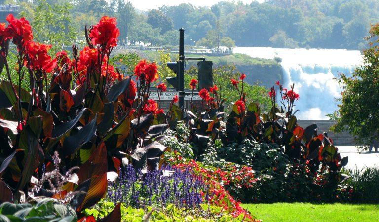 American Spring Break in Niagara Falls Ontario