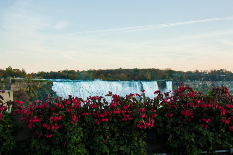 free things to do in November in Niagara Falls